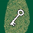 Fingerprint and security key — Stock Vector