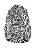 Fingerprint — Stock Vector