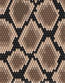 Seamless pattern of snake skin — Stock Vector