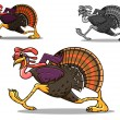 Running turkey bird — Stockvectorbeeld