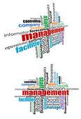 Nube de etiquetas de gestión — Vector de stock