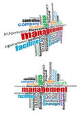 Yönetim etiketler cloud — Stok Vektör