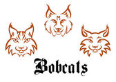 Bobcats and lynxs — Stock Vector