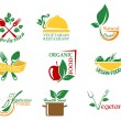 Vegetarifood symbols — Stock Vector #31593255