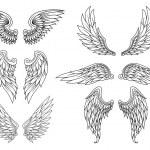 Heraldic wings set — Stock Vector #31594023