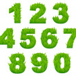 Stock Vector: Grass numbers and digits
