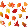 Autumnal red, yellow and brown leaves — Stock Vector