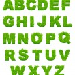 Stock Vector: Green grass letters of alphabet