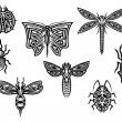 Tribal tattoos set with ornamental elements of insects — Stock Vector