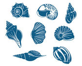 Blue shells and mussels set — Stock Vector