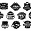 Labels set in vintage western style — Stock Vector