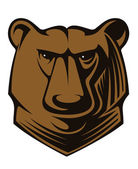Big brown bear head — Stock Vector