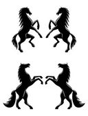 Silhouettes of pairs of prancing horses — Stock Vector