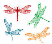 Pretty dainty dragonfly designs — Stock Vector
