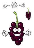 Cartoon bunch of currant berries — Stock Vector