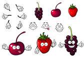 Cartoon cherry, strawberry and blackberry — Stock Vector