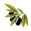 Leafy green twig with ripe black olives — Stock Vector