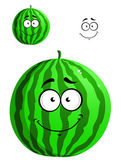 Green cartoon watermelon — Stock Vector