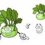 Fun cartoon kohlrabi vegetable — Stock Vector #46567071