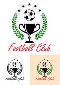 Football Club Championship emblem or icon — Stock Vector