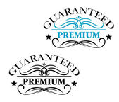Guaranteed Premium calligraphic elements — Stock Vector