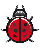 Red and black spotted cartoon ladybug — Stock Vector