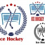 Ice hockey net emblems — Stock Vector #49907263