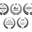 Set of premium and best laurel wreaths — Vector de stock  #49907387