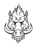 Head of a fierce wild boar — Stock Vector