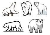 White polar bears set — Stock Vector