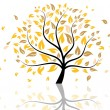 Autumn tree — Stock Vector #12061029