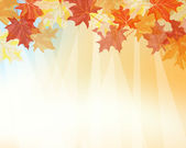 Autumn background — Vecteur