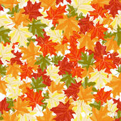 Maples leaves seamless — Stock Vector