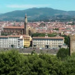 Stock Video: Florence panorama