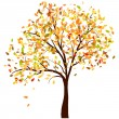 Autumn birch - Stock Vector