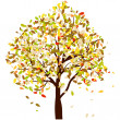 Autumn oak — Stock Vector