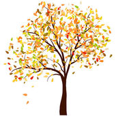 Herfst berk — Stockvector