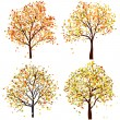 Stock Vector: Set of four autumn tree
