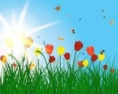 Color meadow — Stock Vector