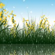 Grass with reflections in water - Stock Vector