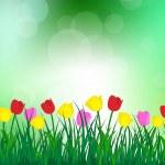 Summer meadow — Stock Vector #25511381