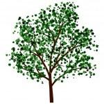 Summer tree — Stock Vector #25511389