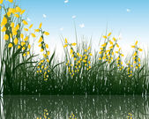 Grass with reflections in water — Stock Vector