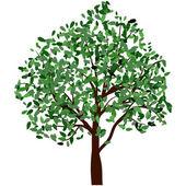 Letní strom — Stock vektor