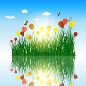 Tulips in grass with reflection in water — Stock Vector