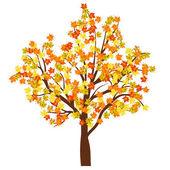 Autumn maple tree — Stock Vector
