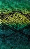 Snake skin background — Stock Photo