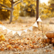 Pumpkins surrounded by leaves — Stock Photo #24044997