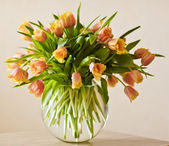 Orange and yellow tulips — Stock Photo