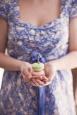Słodki macarons — Zdjęcie stockowe